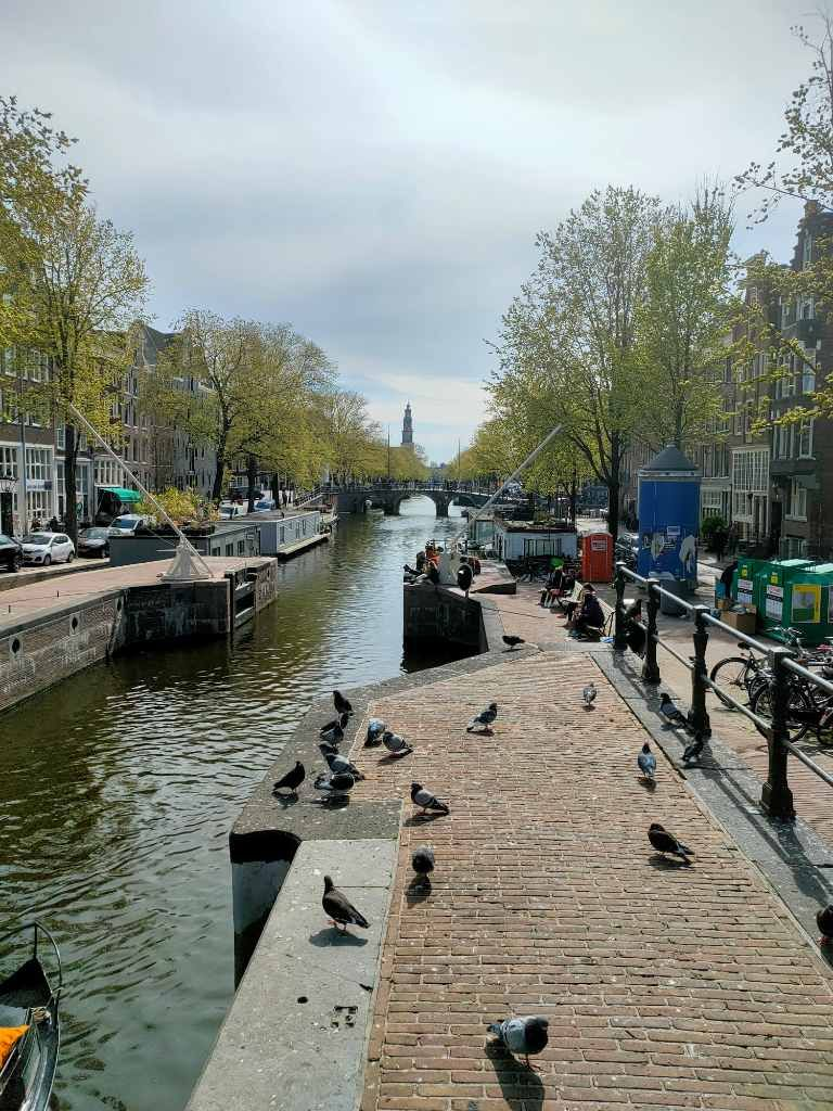 Haarlemmerstraat-restaurant-wandeling-Amsterdam