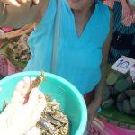 inkopen op de lokale markt in Chang Rai Thailand