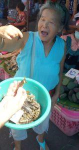 inkopen doen voor de kookworkshop op de lokale markt in Chang Rai Thailand